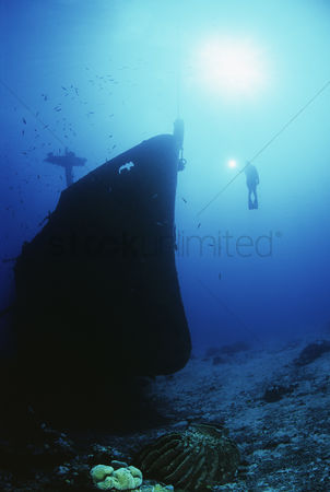 Diving : Diver exploring bow of sunken fishing trawler