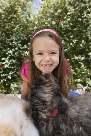 Domesticated animal : Dog licking little girl s chin