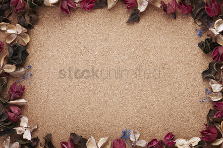 Blank : Dried flowers concept