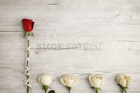 Blank : Flatlay of wooden background with roses