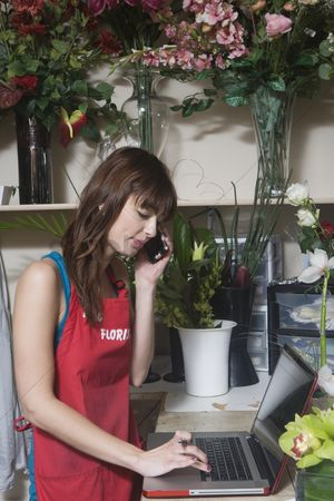 Houseplant : Florist checks orders on laptop computer