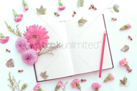 Flat : Flowers with open blank book design