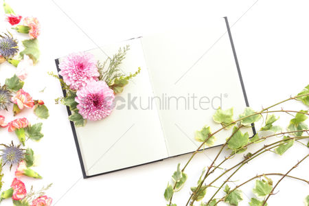 Blossom : Flowers with open blank book design