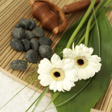 High angle view : Flowers  wooden massager and small stones