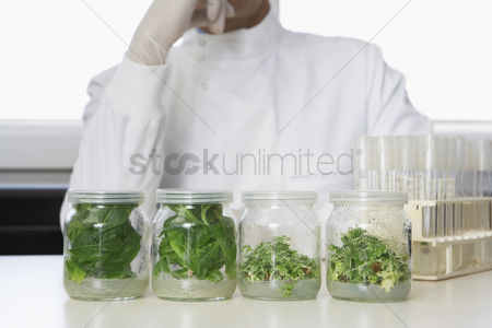Selection : Four glass jars containing plant material lab worker behind