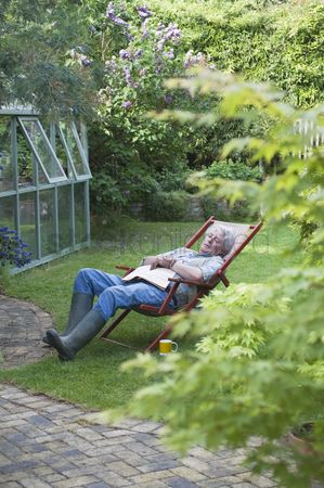 Greenhouse : Gardener sleeps on deckchair in back garden