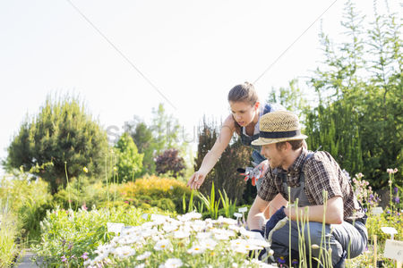 Two people : Gardeners working at plant nursery