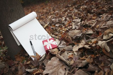 No people : Gift box with notepad and pen