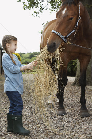 Ponytail : Girl  5-6  feeding horse hay outdoors