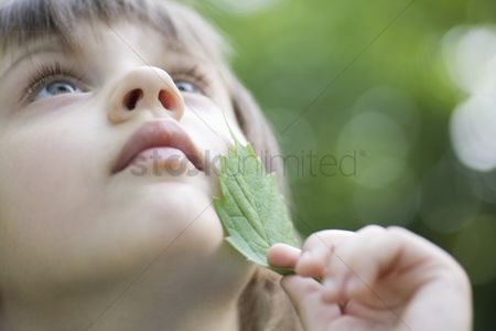 Leaf : Girl holds leaf to her chin looking up