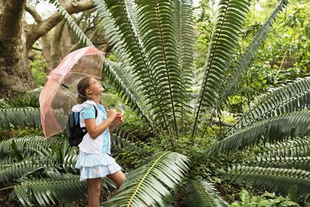 Pre teen : Girl looking at large fern