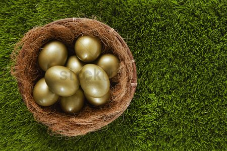 Grass background : Golden eggs in a nest