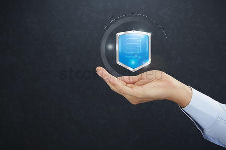 Glossy : Hand presenting a shield with web hosting service icon