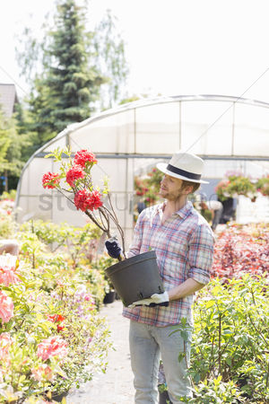 Greenhouse : Male gardener looking at flower pot outside greenhouse