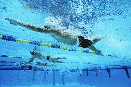Swimmer : Male swimmers racing in pool underwater view