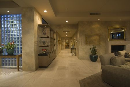 Houseplant : Marble floored hallway with glass bricks palm springs