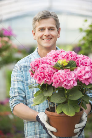 Greenhouse : Portrait of happy man holding flower pot in greenhouse