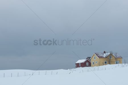 Winter : Remote house in coastal landscape flakstad flakstadoya  loftofen norway
