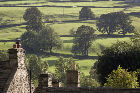 Land : Roofs of houses and trees on fields in yorkshire dales yorkshire england