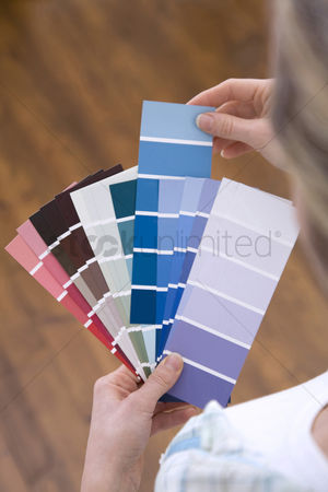 Interior : Selecting paint colour for new home