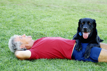Three quarter length : Senior man and his dog relaxing in the park