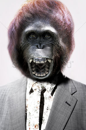 Proud : Senior man with gorilla s head laughing in front white background