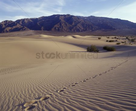 Remote : Single track of footsteps in   death valley national park   mequite flats sand dunes