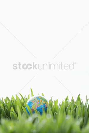 Grass background : Small globe in grass