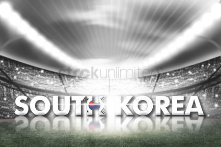 Pitch : South korea football stadium