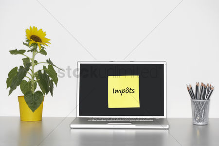 Advice : Sunflower plant on desk and sticky notepaper with french text on laptop screen saying  imp    ts   taxes