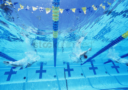 Swimmer : Underwater view of professional participants racing in pool