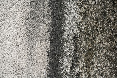 Weathered : Wall  close-up