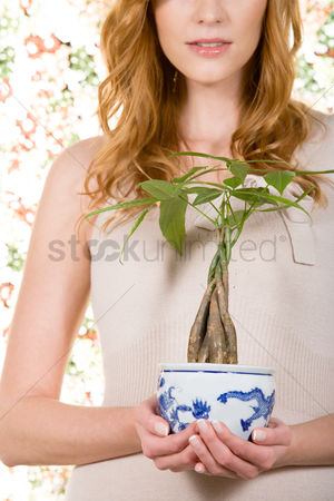 Houseplant : Woman holding houseplant