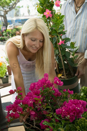Choosing : Woman shopping for flowers at plant nursery