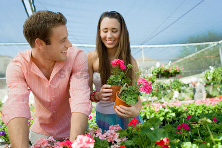 Greenhouse : Young couple choosing potted flowers in garden center